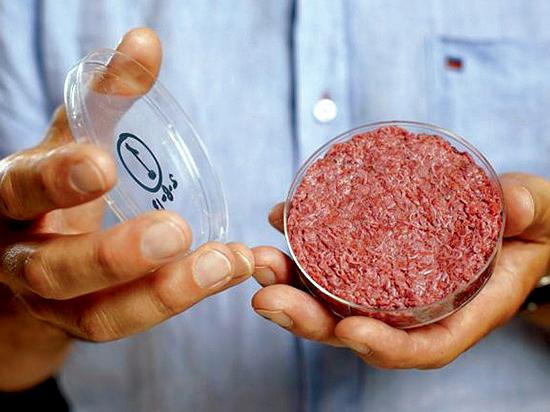 Новые пищевые технологии могут накормить голодающих и не только
